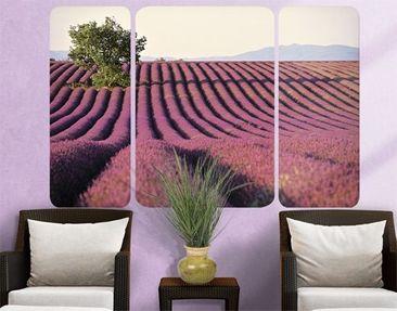 Produktfoto Wall Mural Lavender Triptych II