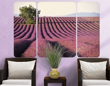 Produktfoto Selbstklebendes Wandbild Lavender Triptychon II