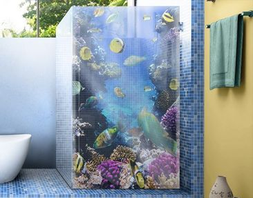 Produktfoto Window Mural Underwater Dreams