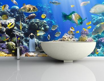 Produktfoto Photo Wall Mural Underwater Reef