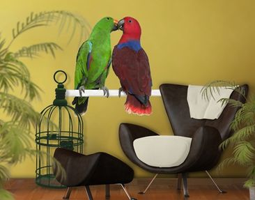 Produktfoto Wall Decal no.645 Parrots In Love