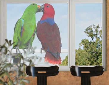 Product picture Window Sticker no.645 Parrots In Love