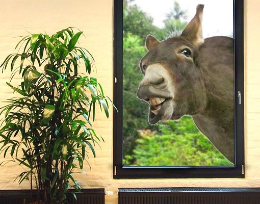 Produktfoto Fenstersticker No.249 Neugieriger Esel 50x80cm