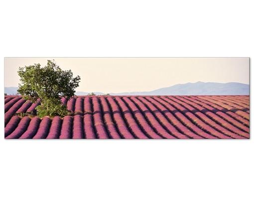 Produktfoto Leinwandbild No.400 Lavender 120x40cm