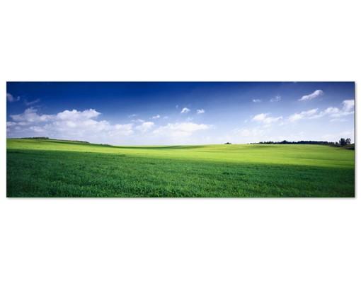 Produktfoto Leinwandbild No.397 Natures Peace 120x40cm
