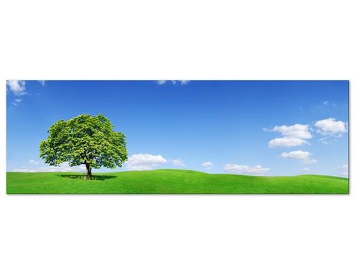 Produktfoto Leinwandbild No.473 Panoramic 120x40cm