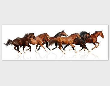 Product picture Canvas Art no.481 Horse Drove 120x40cm