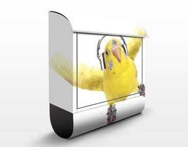Product picture Design Letter Box Skating Budgie...