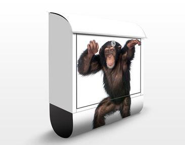 Immagine del prodotto Cassetta postale Cheery Monkey 39x46x13cm