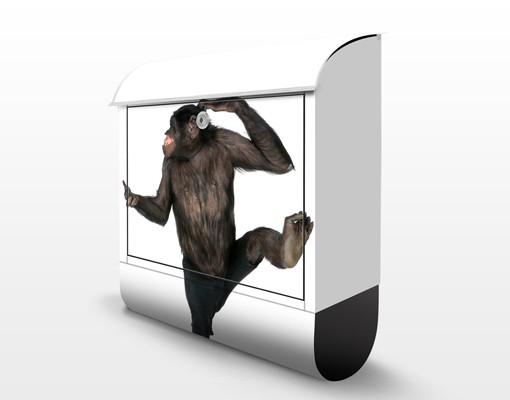 Produktfoto Briefkasten mit Zeitungsfach - Alberner Affe - Briefkasten mit Tiermotiv