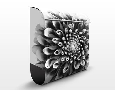 Product picture Design Letter Box Aster II 39x46x13cm