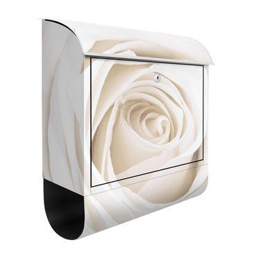 Produktfoto Rosen Briefkasten mit Zeitungsfach - Pretty White Rose - Briefkasten Blumenprint