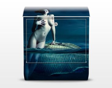 Product picture Design Letter Box Nude With Fish...