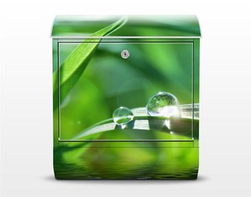Product picture Design Letter Box Green Ambiance II...