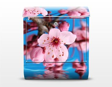 Product picture Design Letter Box Cherry Blossom...