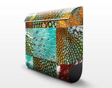 Product picture Design Letter Box Reptile Structure...