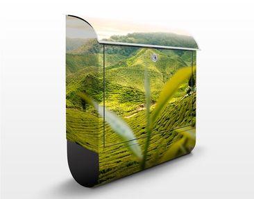 Produktfoto Briefkasten mit Zeitungsfach - Teagarden - Hausbriefkasten Grün