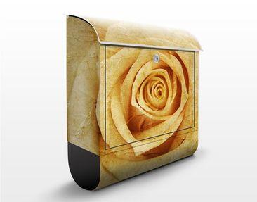Produktfoto Briefkasten mit Zeitungsfach - Vintage Rose - Blumen Gelb