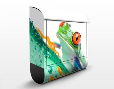 Product picture Design Letter Box Frog 39x46x13cm