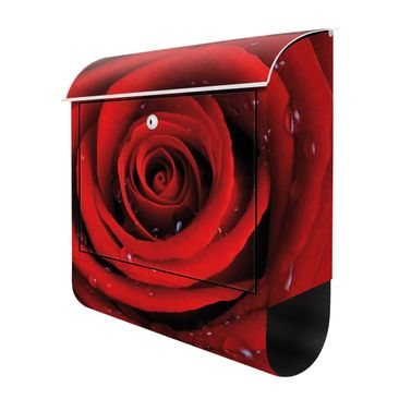 Product picture Design Letter Box Red rose with water...