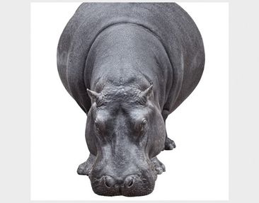 Product picture Design Table Hippo 55x55x45cm