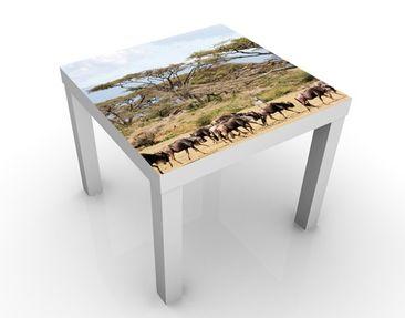 Produktfoto Design Tisch Gnuherde in der Savanne 55x55x45cm
