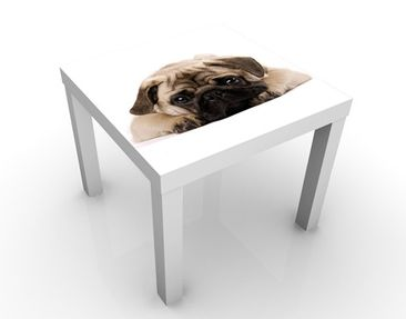 Produktfoto Design Table Cuddly Pug 55x55x45cm