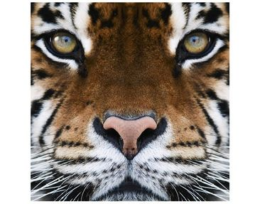 Product picture Design Table Tiger Eyes 55x55x45cm