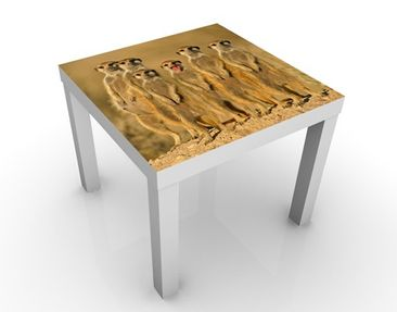 Product picture Design Table Meerkat Family 55x55x45cm