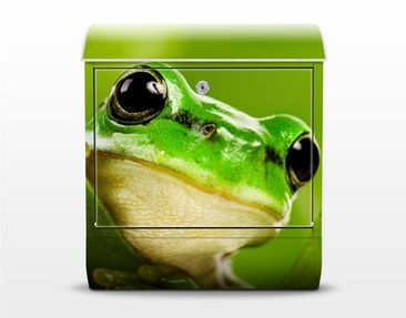 Product picture Design Letter Box Tree Frog 39x46x13cm