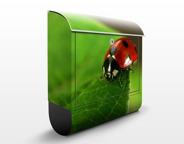 Product picture Design Letter Box Lady Bird 39x46x13cm