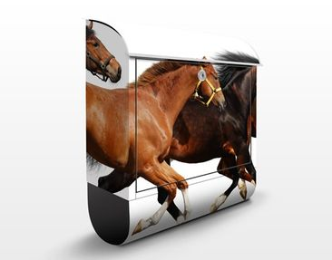 Product picture Design Letter Box Horse Drove 39x46x13cm