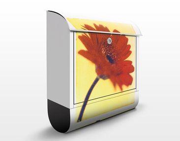 Produktfoto Briefkasten mit Zeitungsfach - Only You - Blumen Rot