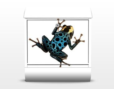 Product picture Design Letter Box Poison Dart Frog...