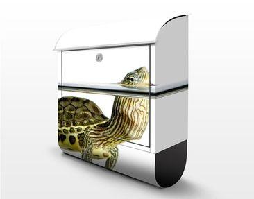 Product picture Design Letter Box Schildkröte...