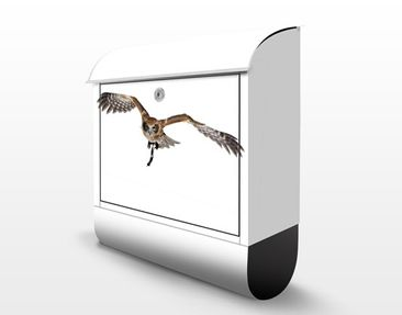 Product picture Design Letter Box Nocturnal Hunter...