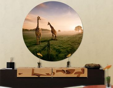 Product picture Canvas Art Circle Surreal Giraffes