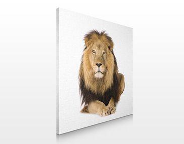 Product picture Canvas Art no.255 Lion King 70x70cm