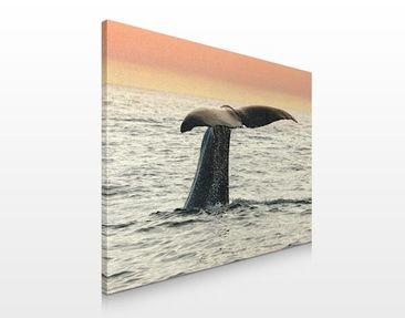 Produktfoto Leinwandbild No.106 Wal beim Tauchgang 80x60cm