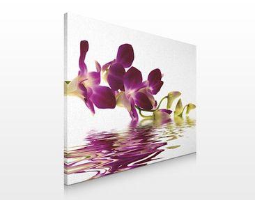 Produktfoto Leinwandbild No.165 Pink Orchids Waters 80x60cm