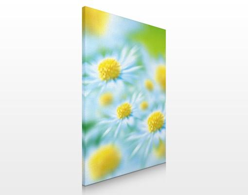 Leinwandbild No.17 Daisy 60x80cm