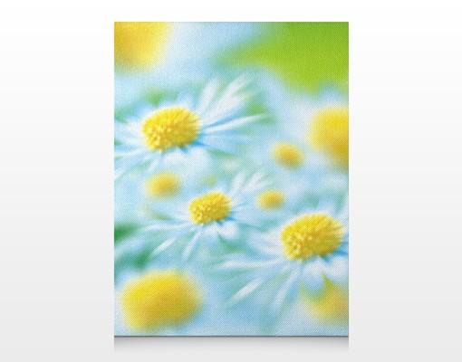 Produktfoto Leinwandbild No.17 Daisy 60x80cm