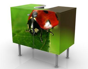Product picture Design Vanity Lady Bird 60x55x35cm