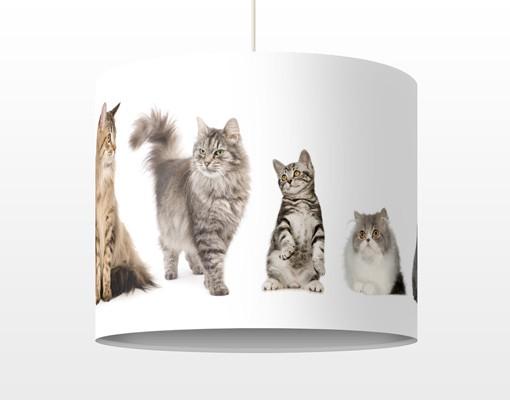 Produktfoto Kinderlampe Katzenbande - Lampe -...