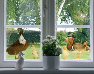 Produktfoto Fensterfolie - Fenstersticker No.722 The Duck Family - Fensterbilder