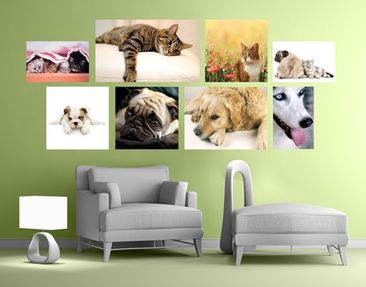 Immagine del prodotto Adesivo murale Cats and Dogs Sticker Set