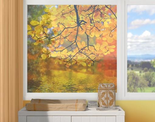 Fensterfolie Sichtschutz Fenster Touching The Water Fensterbilder