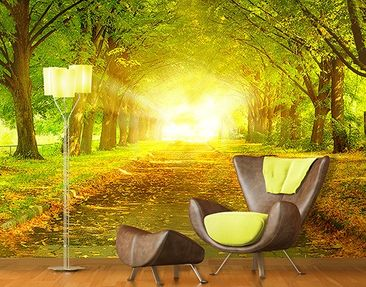 "Produktfoto Photo Wall Mural no.199 ""AUTUMN AVENUE""..."