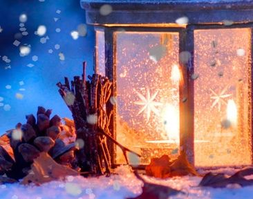 Product picture Window Mural Winter Romance