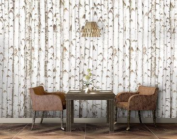 Produktfoto Photo Wall Mural no.YK15 Birch Wall